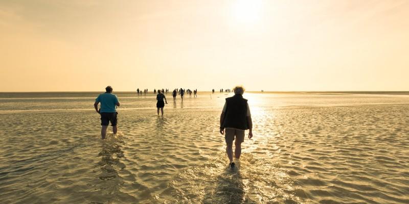 Wadlopen Beleef Water Events Lauwersoog.jpg